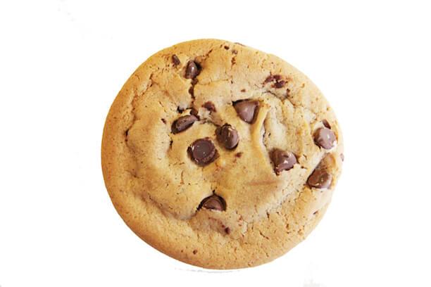 zepa.dk cookie politik